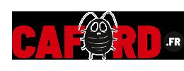 Comment se débarrasser des cafards et blattes